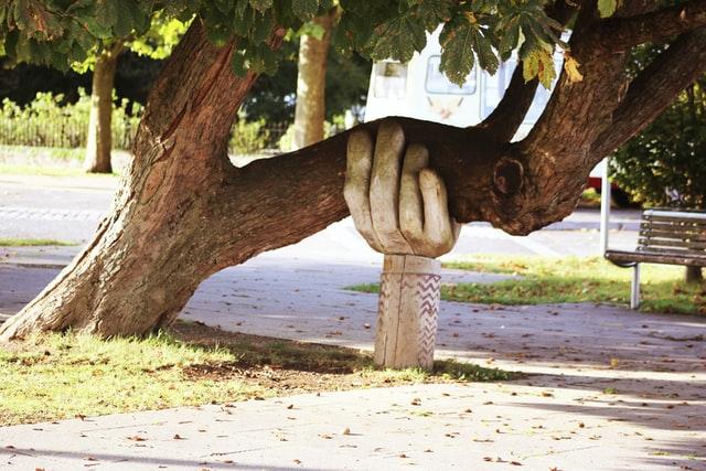 como ajudar as pessoas - mão segurando uma árvore prestes a cair