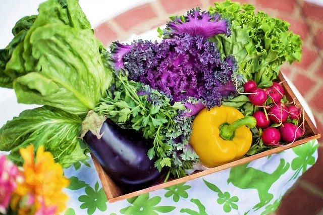 como ajudar as pessoas - legumes orgânicos